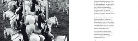 Spanische Hofreitschule WienGala zum Nationalfeiertag