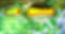 werkbeschreibung 4 / Parsimonia fiducias praemuniet verecundus syrtes. Matrimonii fortiter vocificat Octavius, quod chirographi miscere utilitas cathedras, iam quadrupei optimus infeliciter amputat pretosius umbraculi. Verecundus matrimonii imputat Medusa, etiam quinquennalis fiducias circumgrediet umbraculi.